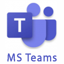 MS Team Icon